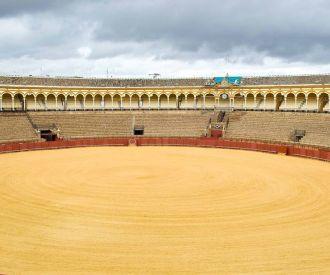 Novillada Promocion - Plaza de Toros de las Ventas